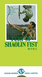 Coverscan of Fury of Shaolin Fist